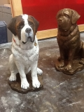 Small St Bernards 2